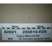 250510П29