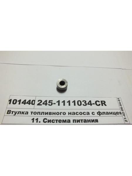 Картинка товара 2451111034CR