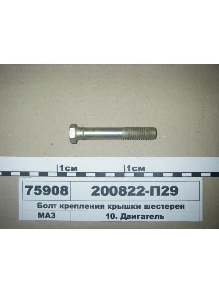 Картинка товара 200822П29