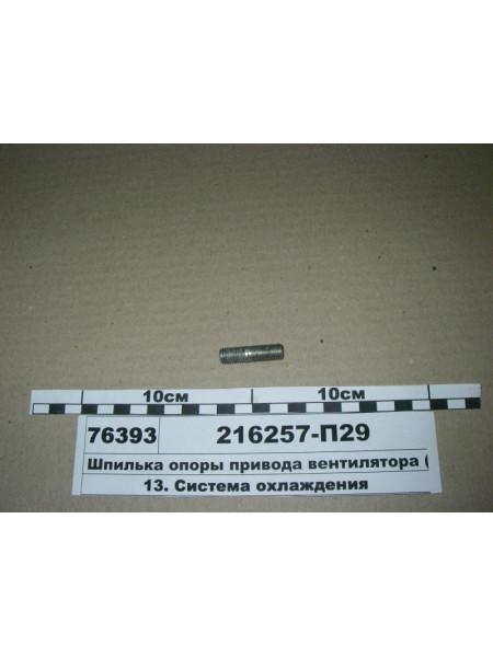 Картинка товара 216257П29
